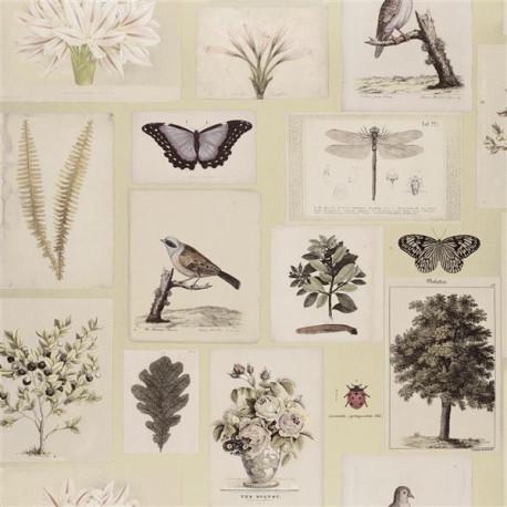 flora et fauna papier peint rev tement mural intiss non feu lavable fantaisie imprim botanique. Black Bedroom Furniture Sets. Home Design Ideas